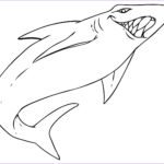 Shark Coloring Sheet Inspirational Stock Free Printable Shark Coloring Pages For Kids