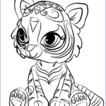 Shimmer and Shine Coloring Sheets Luxury Image Nahal From Shimmer and Shine Coloring Page
