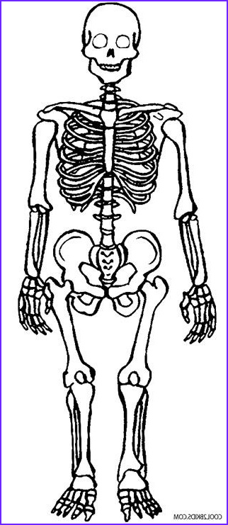 Skeleton Coloring Pages New Image Printable Skeleton Coloring Pages for Kids