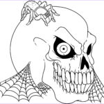 Skull Coloring Book Beautiful Gallery Free Printable Skull Coloring Pages For Kids