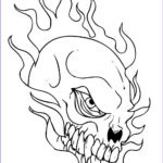 Skull Coloring Book Inspirational Gallery Free Printable Skull Coloring Pages For Kids