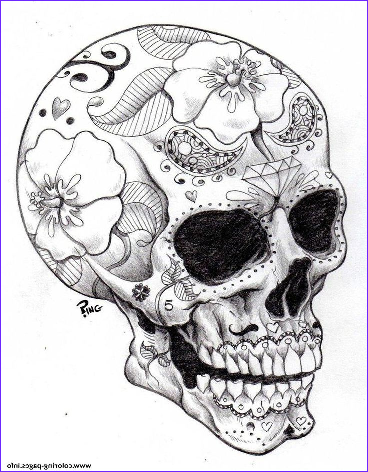 Skull Coloring Pages to Print Unique Photos Print Real Sugar Skull Precision Hd Hard Coloring Pages