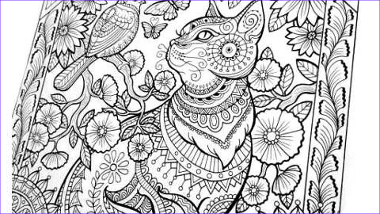 coloring book for adults large spiral bound