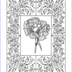 Small Adult Coloring Books New Photos 260 Best Free Adult Coloring Book Pages Images On Pinterest