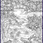 Small Adult Coloring Books New Stock 3797 Best Coloring Pages For Big And Small Kids Images On