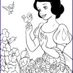 Snow White Coloring Book New Photography August 2013
