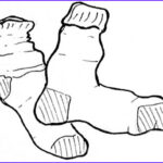 Socks Coloring Page New Collection Sock Drawing At Getdrawings