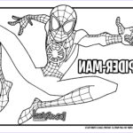 Spider Coloring Beautiful Photography How To Draw Miles Morales Spider Man Into The Spider