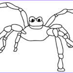 Spider Coloring Best Of Photos 34 Best Images About Cute Spider On Pinterest