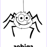 Spider Coloring Best Of Stock Spider Coloring Page Super Simple