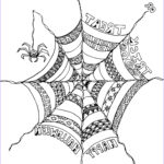 Spider Coloring Cool Photos Spider Webs Drawing At Getdrawings