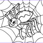 Spider Coloring Elegant Photos 34 Best Images About Cute Spider On Pinterest