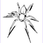 Spider Coloring Elegant Photos Free Printable Spider Coloring Pages For Kids
