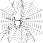 Spider Coloring Inspirational Photography Halloween Spider Drawing At Getdrawings