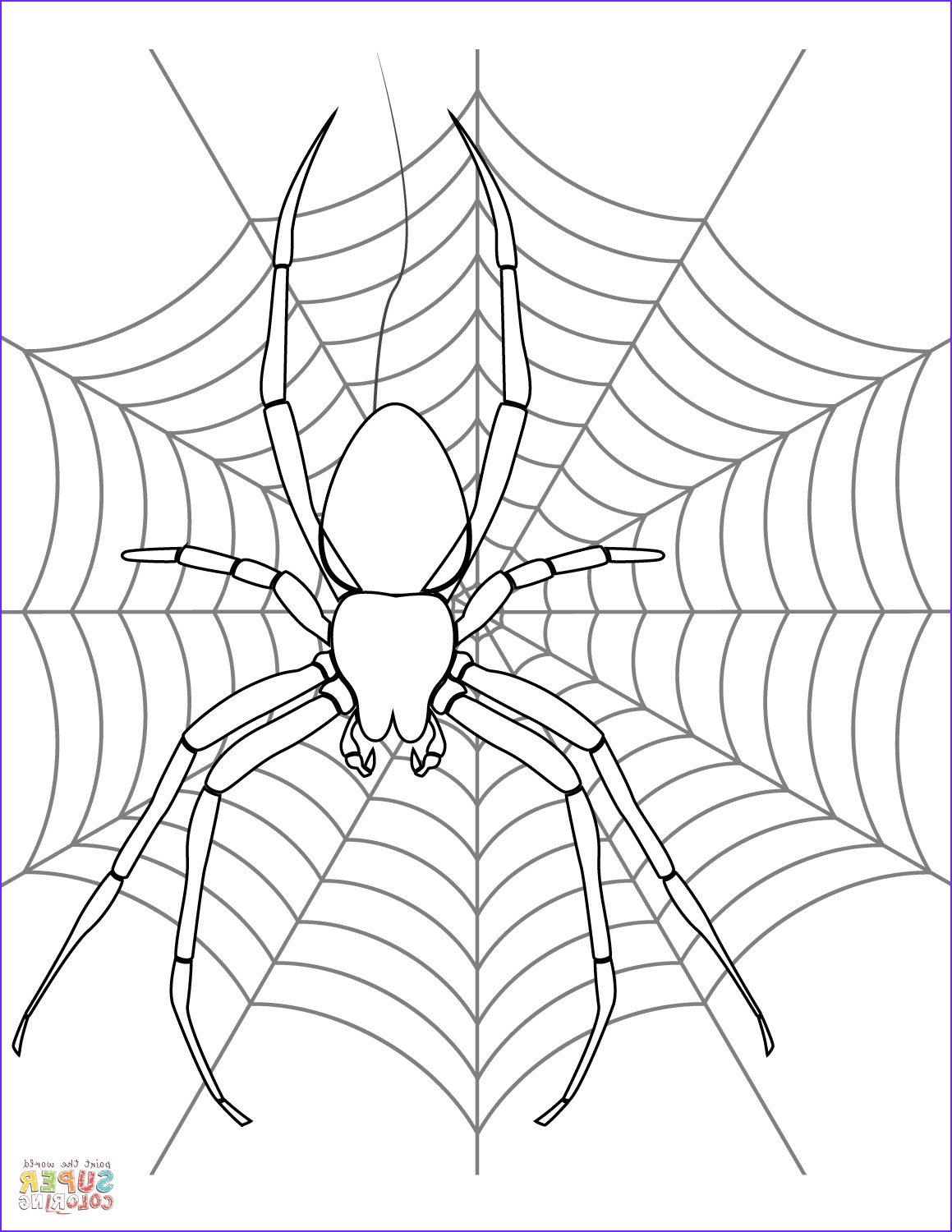 halloween spider drawing