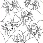 Spider Coloring Inspirational Photos Six Cute Spider On Spider Web Coloring Page Netart