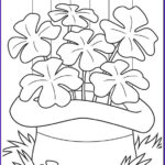 St Patrick Day Coloring Pages Cool Photography Shamrocks Coloring Page