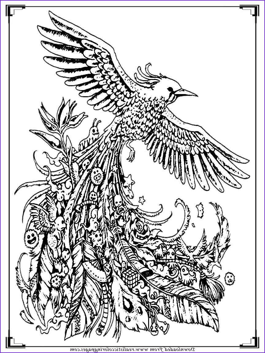 Stress Relieving Coloring Pages Best Of Image Printable Birds Coloring Pages for Adults