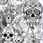 Sugar Skull Coloring Pages Beautiful Photography 424 Best Skull Coloring Images On Pinterest