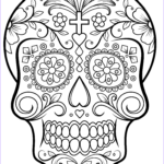Sugar Skull Coloring Pages Best Of Stock Sugar Skull Coloring Page