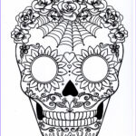 Sugar Skull Coloring Pages Inspirational Gallery Five Different Sugar Skull Coloring Pages Printable