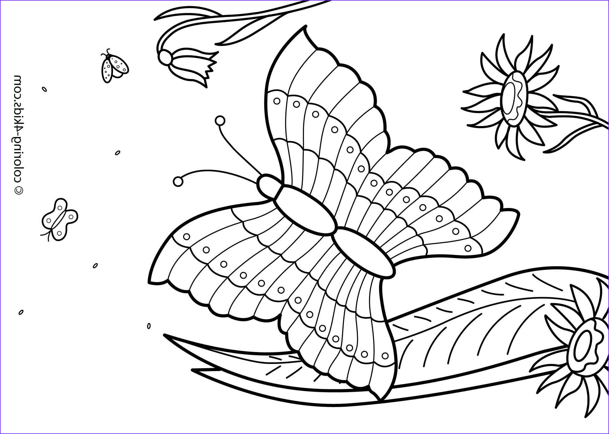 Summer Coloring Pages Beautiful Photos 27 Summer Season Coloring Pages Part 2
