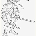 Teenage Mutant Ninja Turtles Coloring Pages Awesome Photos Craftoholic Teenage Mutant Ninja Turtles Coloring Pages