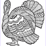 Thanksgiving Coloring Pages For Adults Beautiful Gallery Detailed Turkey Advanced Coloring Page