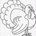 Thanksgiving Coloring Sheets New Stock Colours Drawing Wallpaper Printable Thanksgiving Coloring