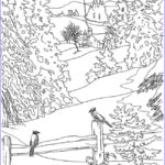 The Art Of Nature Coloring Book Cool Photography Realistic Landscape Coloring Pages At Getcolorings