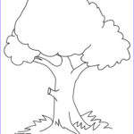 Tree Coloring Book Awesome Images Coloring Pages Trees Google Search