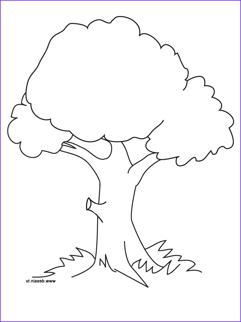 Tree Coloring Book Beautiful Collection Free Printable Tree Coloring Pages for Kids