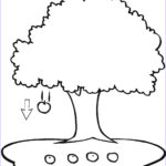 Tree Coloring Book Beautiful Image Free Printable Apple Coloring Pages For Kids