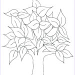Tree Coloring Book Beautiful Images Pin On Life Book Family Tree