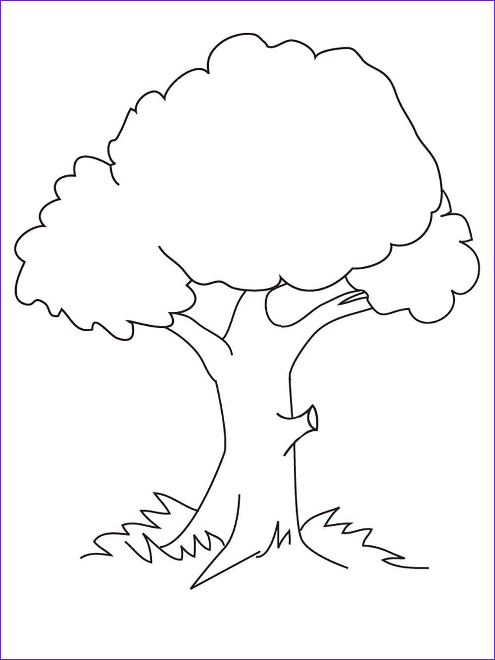 Tree Coloring Book Beautiful Photos Coloring for Nature and Food Picture