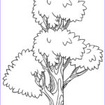 Tree Coloring Book Best Of Photos Free Printable Tree Coloring Pages For Kids