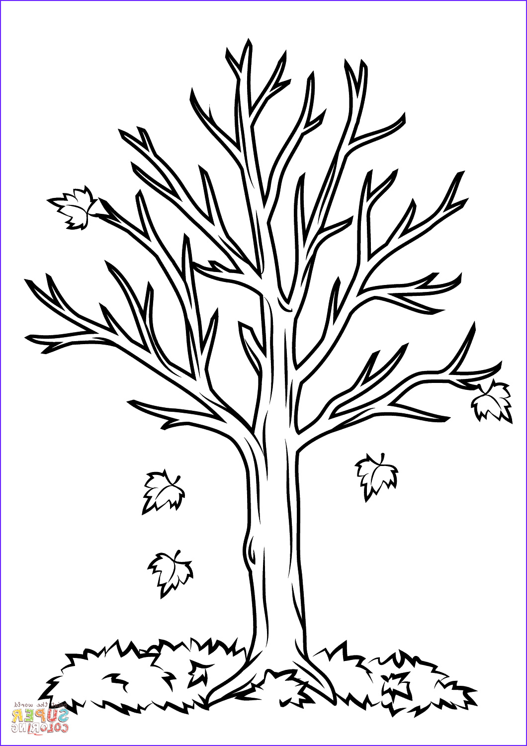 Tree Coloring Book Cool Photography Fall Tree Coloring Page
