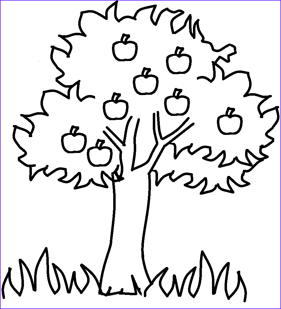 Tree Coloring Book Elegant Image Free Printable Apple Coloring Pages for Kids