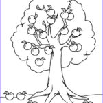 Tree Coloring Book Inspirational Images Free Printable Tree Coloring Pages For Kids