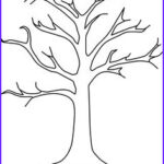Tree Without Leaves Coloring Page Awesome Photos Fall Activities On Pinterest