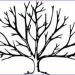 Tree Without Leaves Coloring Page Beautiful Collection Bare Tree Coloring Page