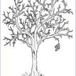 Tree Without Leaves Coloring Page Best Of Photography Tropical Leaves Coloring Pages At Getcolorings