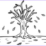 Tree Without Leaves Coloring Page Best Of Photos Tree Autumn Without Leaves Coloring Page Tree