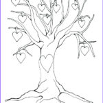 Tree Without Leaves Coloring Page Cool Collection Tree Without Leaves Coloring Page At Getcolorings