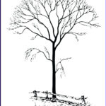 Tree Without Leaves Coloring Page Cool Gallery Tree Drawing Without Leaves At Getdrawings