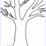 Tree Without Leaves Coloring Page Cool Image Tree Without Leaves Coloring Sketch Coloring Page