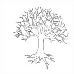Tree Without Leaves Coloring Page Cool Photography Tree Without Leaves Coloring Page To Print And