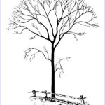 Tree Without Leaves Coloring Page Elegant Gallery Free Printable Tree Coloring Pages For Kids