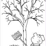 Tree Without Leaves Coloring Page Elegant Gallery Tree Without Leaves Coloring Page To Print And