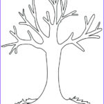 Tree Without Leaves Coloring Page Elegant Photography Charming Idea Printable Fall Tree Coloring
